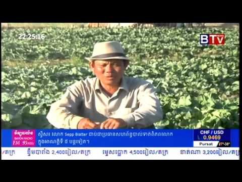 Khmer Agriculture News   Cauliflower Farming Cambodia   YouTube