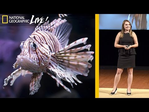 Why Lionfish Should Be Your Favorite Fish to Eat | Nat Geo Live