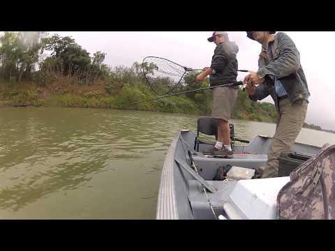 Pesca de Robalo en el Panuco - Tampico Mexico