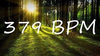 379 BPM Claves Metronome