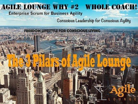 Why Agile Lounge #2 :  My 3 Pillars As A Whole Coach!