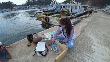 강원도삼척 호산항 찌낚시 계속나와요! 잡아서 생선구이!