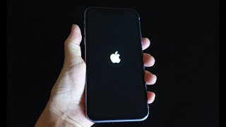 아이폰이 로고만 뜰때 수리법과 새공짜 아이폰 받은 경과…