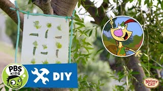 NATURE CAT | Build Nature Frames with Nature Cat! | PBS KIDS