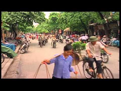 PHỤC HỒI RỪNG NGẬP MẶN Ở VIỆT NAM- MANGROVE REFORESTATION @ VIETNAM