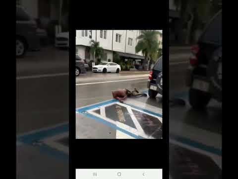 Anjali Queen B - Florida Woman Pushes Man into Traffic After Fight, Truck Hits Him!