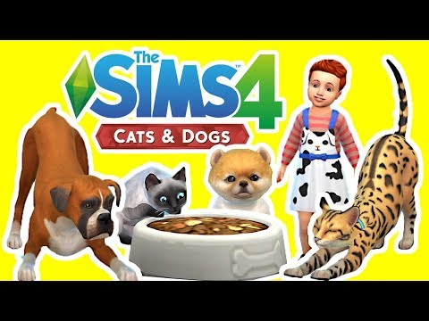 The Sims 4 Cats and Dogs Gameplay