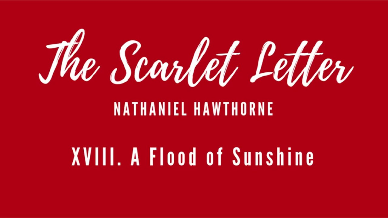 Scarlet Letter   Chapter 18   YouTube