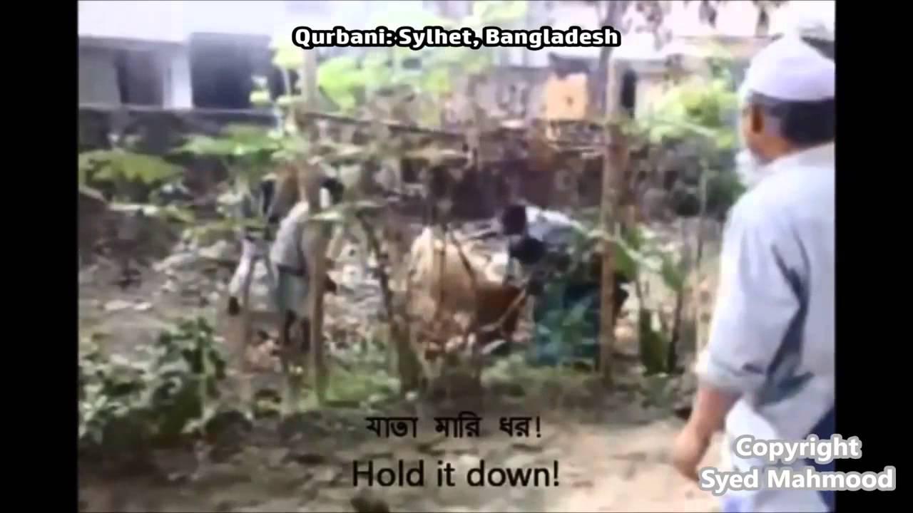 Good Bangladesh Eid Al-Fitr Feast - maxresdefault  Image_27985 .jpg