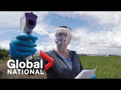 Global National: June 22, 2020 | Global picture of COVID-19 pandemic becomes more grim