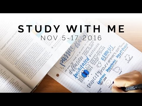 Study With Me: November 5 to 17, 2016