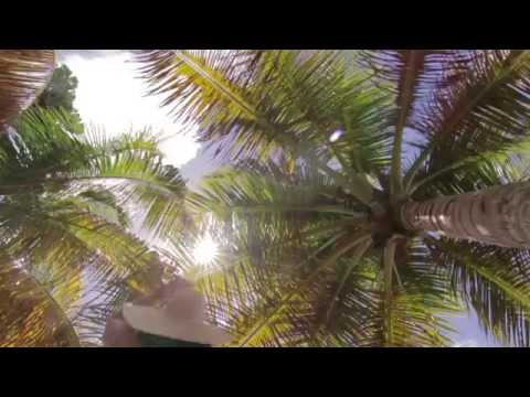 Pure Grenada Coastal Tourism