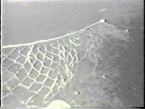 Ghost Nets: The Cruelty