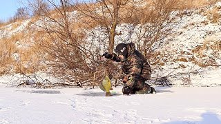 Секреты ловли карася зимой на мормышку и поплавок Как ловить карася на мормышку или поплавок зимой