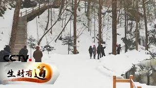 《生财有道》 20200204 冰雪经济系列:吉林辉南——冰雪季 热经济| CCTV财经