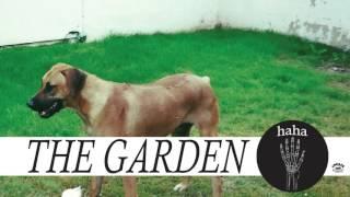 """The Garden - """"Jester"""