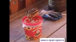 Забавные животные видео  БУРУНДУК и Бабкины семечки