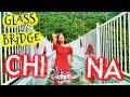 Would YOU DARE? GLASS BRIDGE in China! 🇨🇳😱