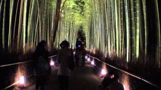 時空の栞 -京都嵐山花灯路 2012- cool japan