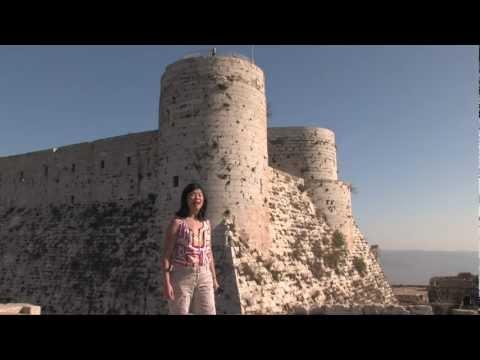MV Aegean Odyssey: Syria