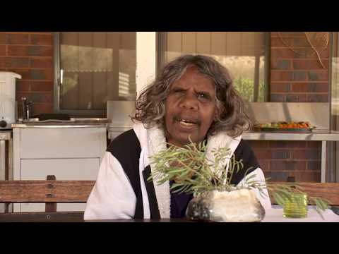 Pitjantjatjara Woman - Vote NO (Pitjantjatjara)