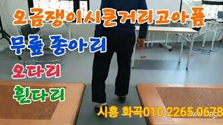 5분의기적문문칩 무릎통증 허리통증 어깨통증즉시없애고 종…