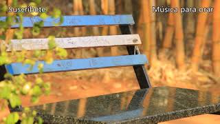 La mejor musica para orar - Instrumental de adoración