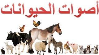 أصوات الحيوانات