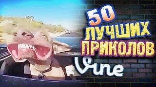 Самые Лучшие Приколы Vine! (ВЫПУСК 115) Лучшие Вайны [17+]