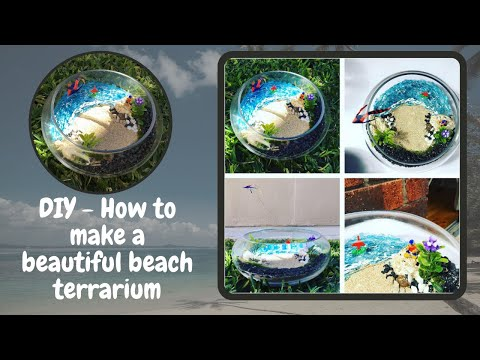 DIY How to make a beach terrarium