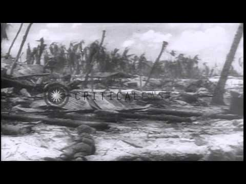 US forces capture Tarawa, Gilbert Islands from Japanese forces and undertake reco...HD Stock Footage