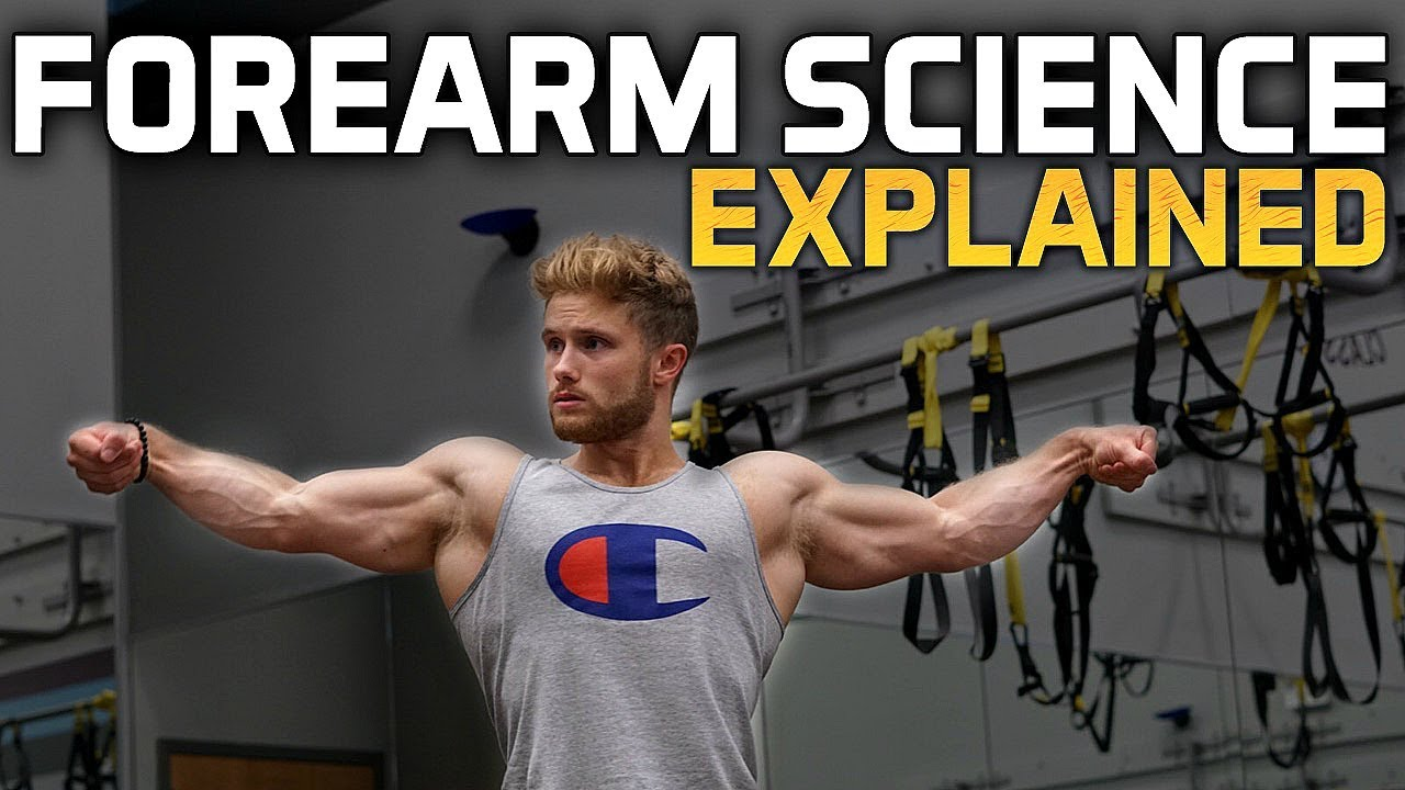 how to build huge forearms training science explained youtube
