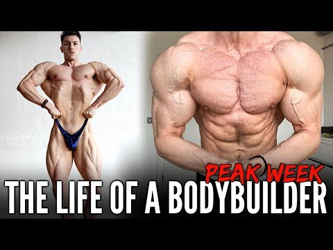 3 DAYS IN THE LIFE OF A BODYBUILDING COMPETITOR | Peak Week Highlights w/ Brandon Harding