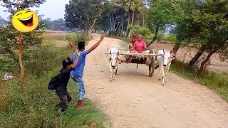 very funny village boys