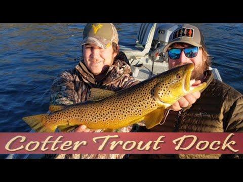 Arkansas White River Trout Fishing Report January 8, 2020