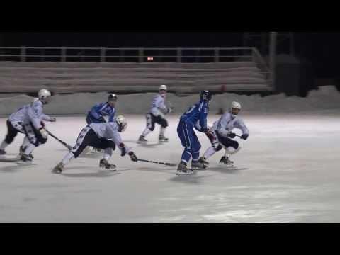 Хоккей с мячом. Чемпионат России 2013-2014 (7)
