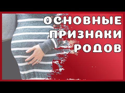 Признаки родов ● ОЩУЩЕНИЯ и ЧТО ПРОИСХОДИТ