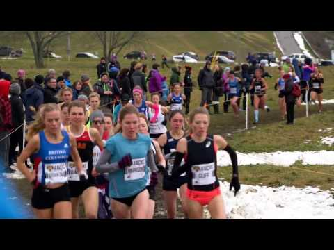 highlights-womens-10k-2016-canadian-cross-country-championships