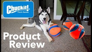 Chuckit! Product Review - The Best Dog Toys
