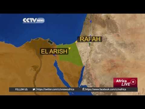 Six policemen killed in Sinai