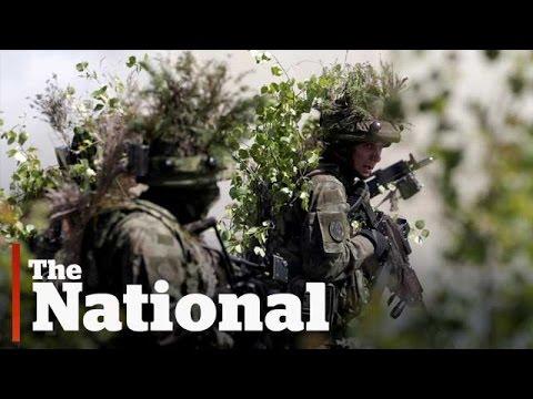 NATO fears under Trump