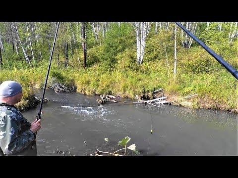 Рыбалка на ХАРИУСА(Забытая