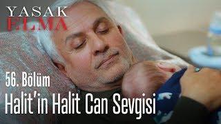 Halit'in Halit Can sevgisi - Yasak Elma 56. Bölüm