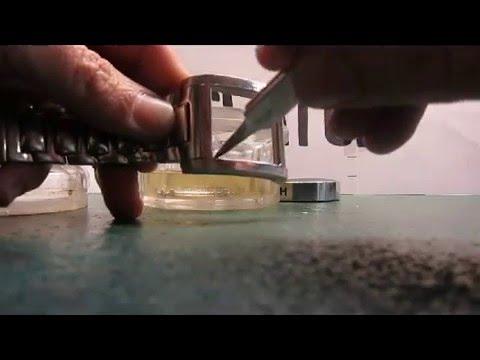 Changer un verre de montre Festina  par Doc watch