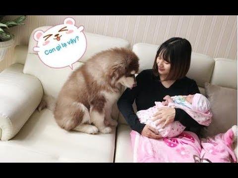 Mật lần đầu gặp em bé mới sinh của Mai, dễ thương hết nấc ==)))