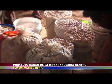 PROYECTO CACAO DE LA MPAA INAUGURA CENTRO DE ACOPIO EN MUNICHIS