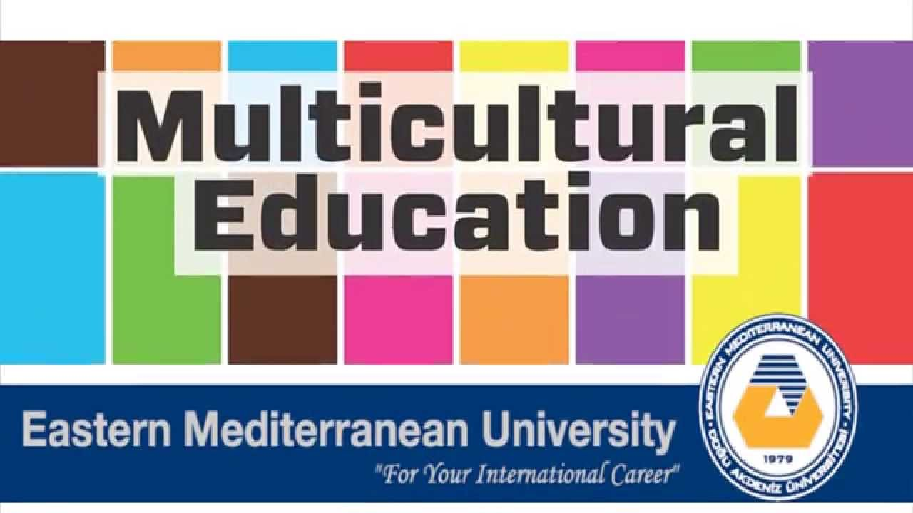 issues in multicultural education essay
