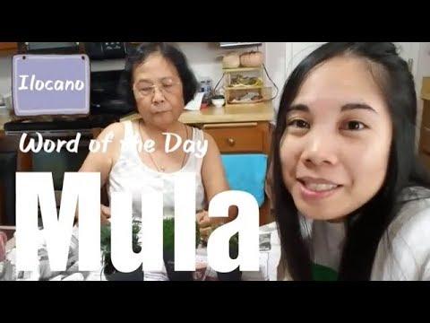 Ilocano: Word of the Day - Mula