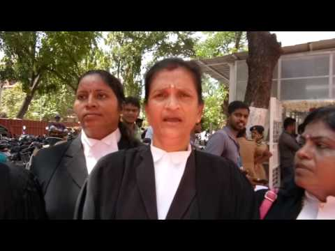 Wla president  Malibu man interview regarding family  court