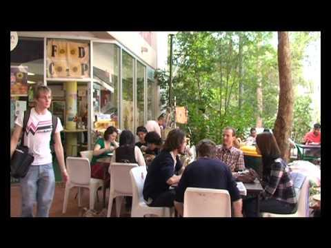 Vegetarian Brisbane truth or fiction